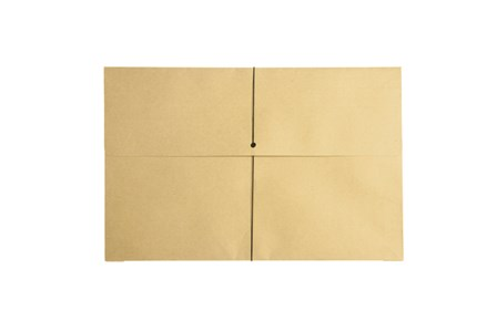 Envelope Expanding w/Elastic Kraft/Elastic Legal