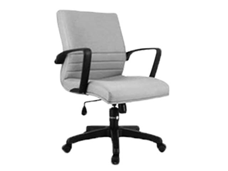 Executive Chair SI-03 Low Back DGry