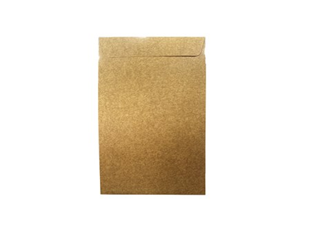 Click Catalog Envelope 250LBS White/Kraft 10 x 15