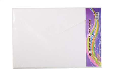 Envelope Document White 5's 10 x 5